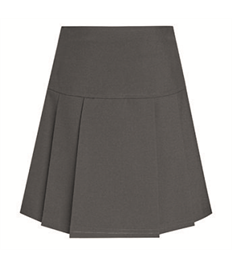 Drop Waist Pleated Skirt